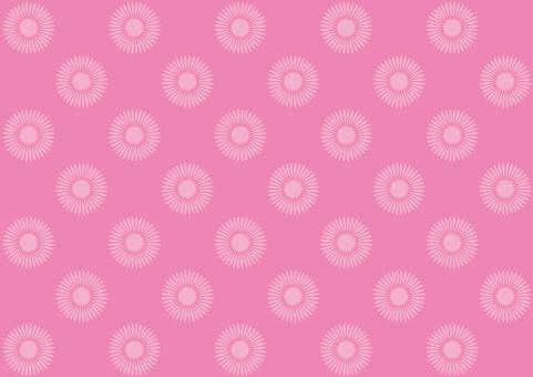 Daisy Wallpaper
