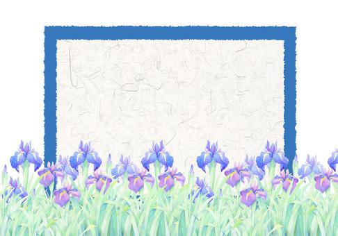 A card full of irises ★ 0083 - F