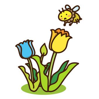튤립과 꿀벌