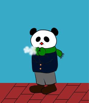 Panda sigh in winter