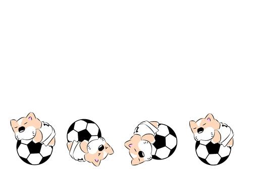 Soccer ball dog korokoro