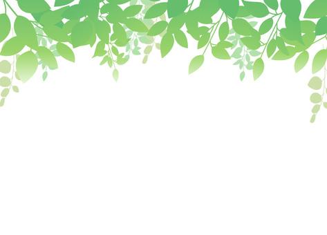 Leaf background 01