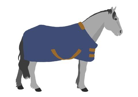 Horse arrival (ash)