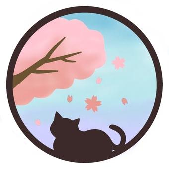 꽃놀이 고양이