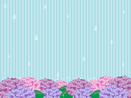 Hydrangea's background 5