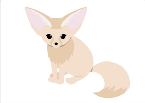 Fennec狐狸