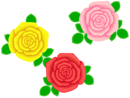 Rose flower pattern wallpaper simple background material illustration