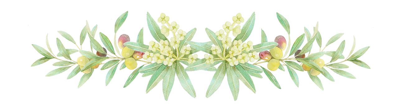 Olive decorations ★ 0361-F