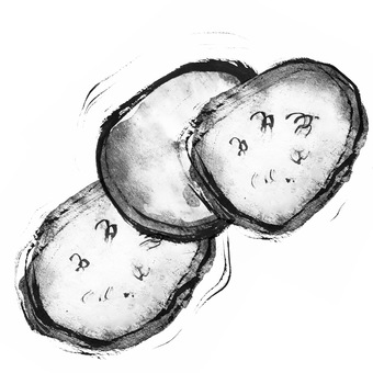 Three cucumber slices hand drawn ink
