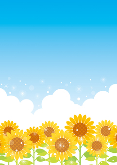 Sunflower and blue sky background 06