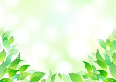 Fresh green material 8