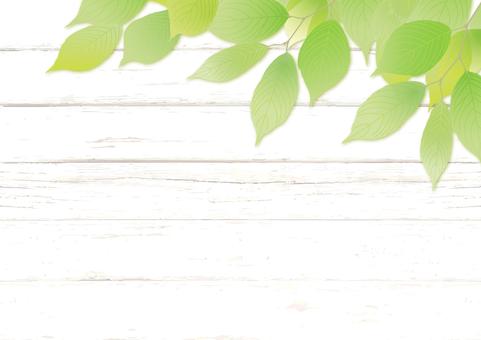 Fresh green and wood board frame