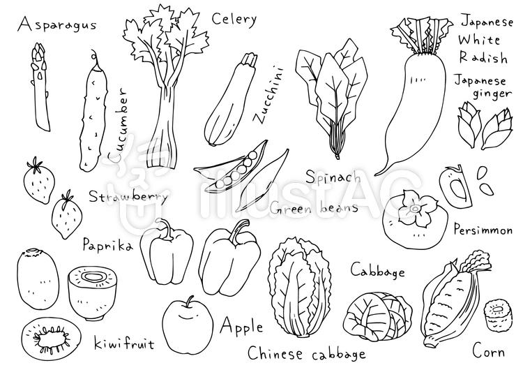 手書きイラスト03 お野菜と果物イラスト No 902027無料イラストなら