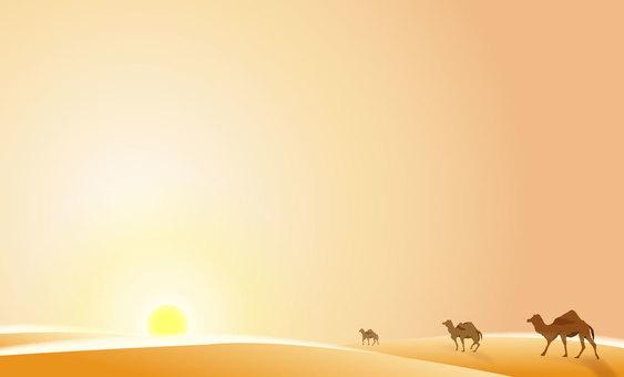Summer desert 02