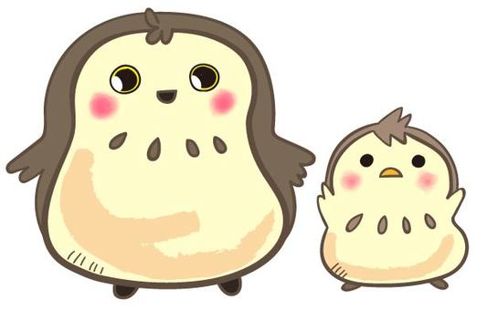 Parent and child of owl