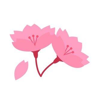 Sakura · Petal 2