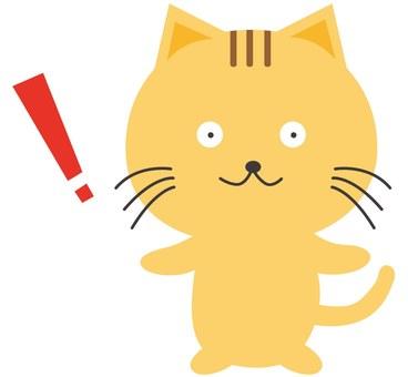 놀란 고양이