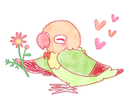 Parakeet and flower