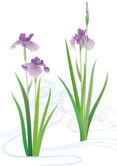Purple flower purple flowing water