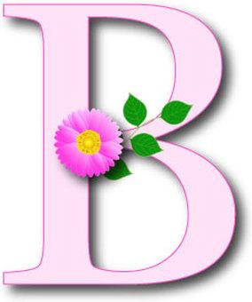 Alphabet B