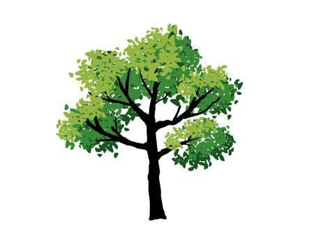 Real tree 01