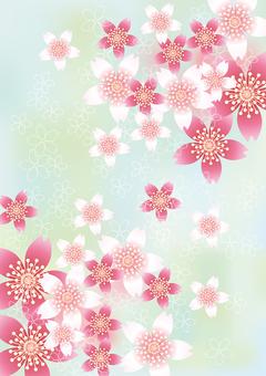 Sakura no Hana 65