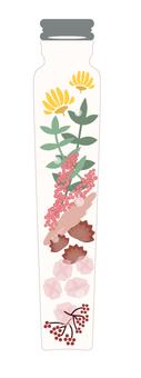 식물 표본 핑크