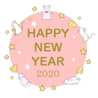 쥐 2020②