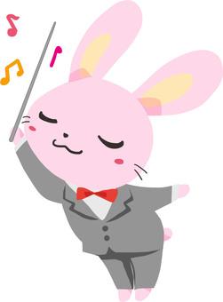 Conductor rabbit