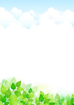 新緑299