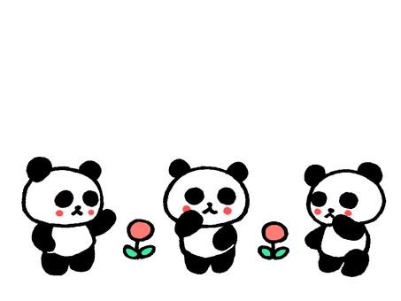 會說話的熊貓2