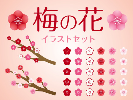 Plum flower illustration set