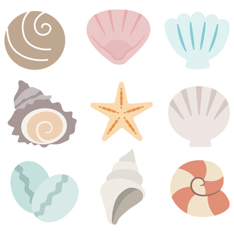 Illustration of summer / sea shells