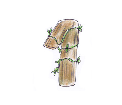 Number (wood 1)