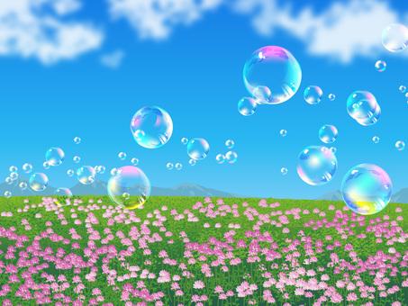 자운영의 들판과 비눗 방울 구슬이 흩 날리는 풍경