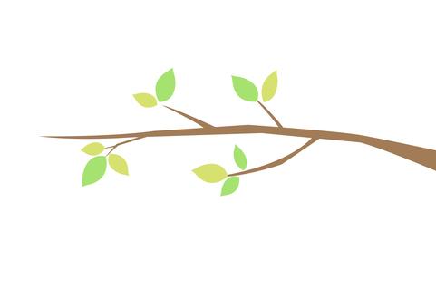 Tree branch 6