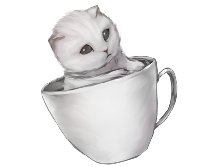 White cat in coffee cup