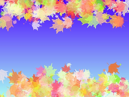 Autumn leaves and sky 11