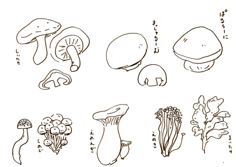 蘑菇7種類型+手寫名稱