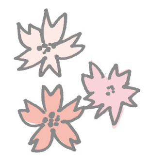 Rough cherry blossoms