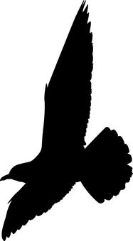 Seagull silhouette