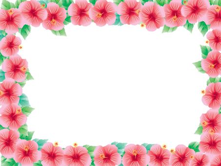 Hibiscus _ card