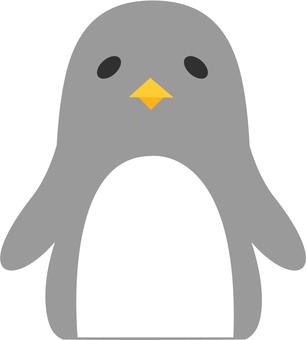 【Animals】 Penguins