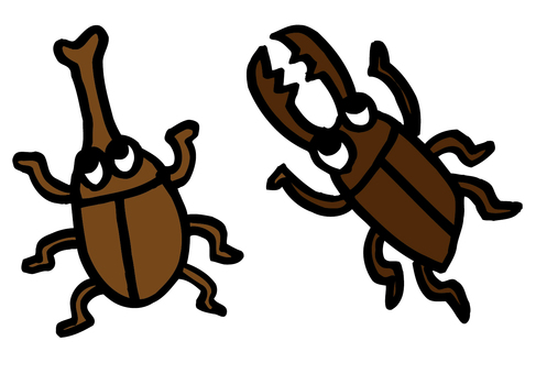 Beetles and stag beetle