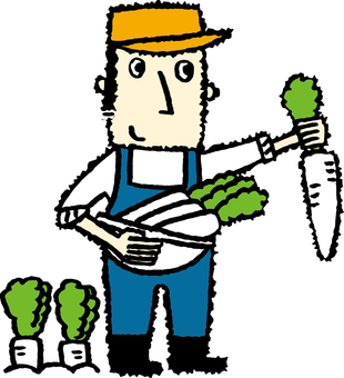 Men who harvest radish