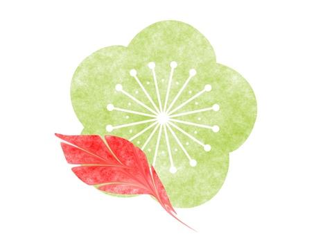 Plum illustration 9
