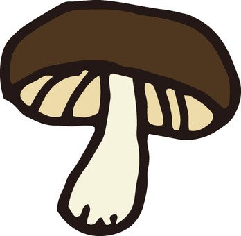 Mushrooms (shiitake mushroom / 1 piece)
