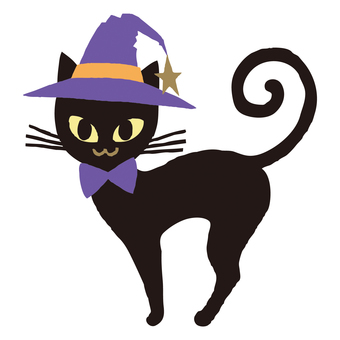 Black cat of a witch hat