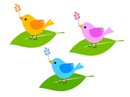 작은 새들