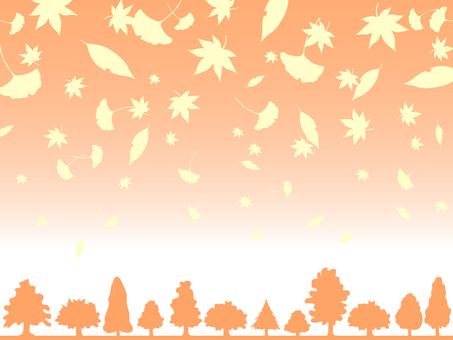Fallen leaves and grove frames